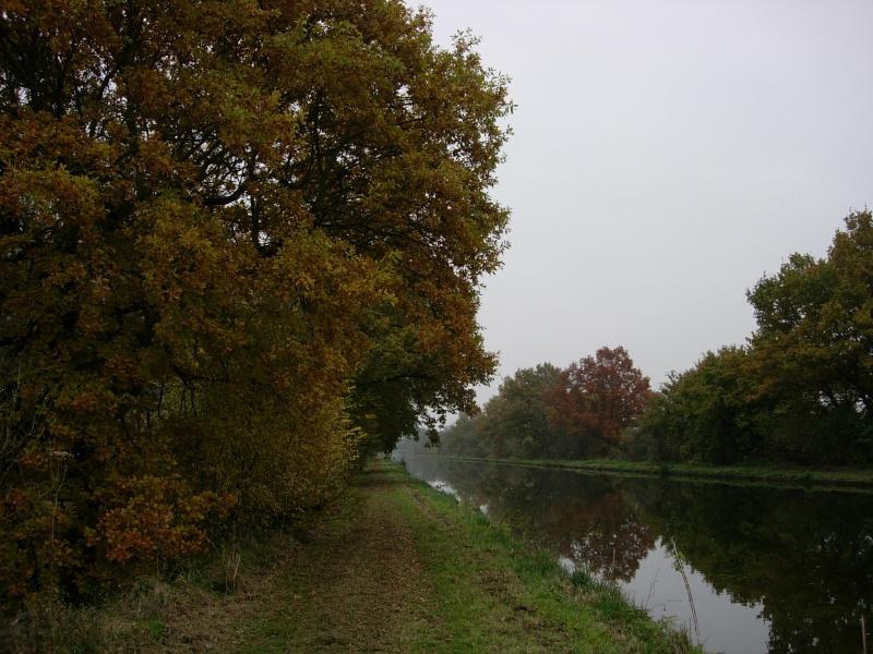Concours photo du mois d'octobre! Dscn2011