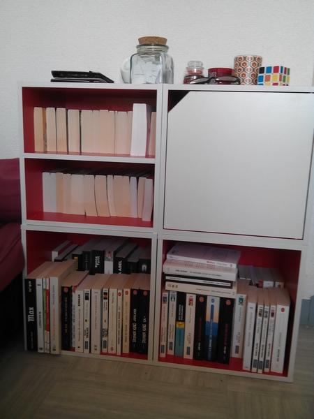 Vos bibliothèques Pal10