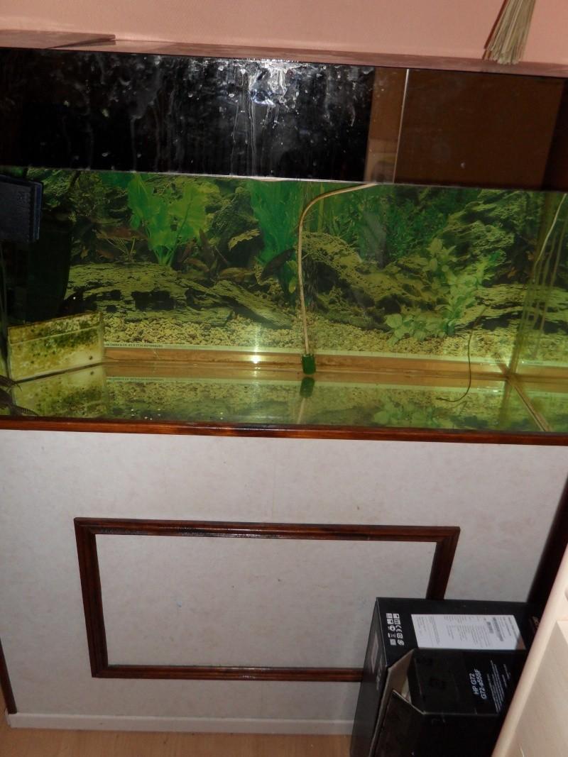 vend tout aquarium et matériel aquariophile 250l_a10