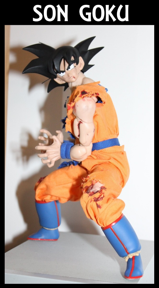 Pan dans les yeux !!! la collec de Pandanlaidan (Michael)  Goku_610
