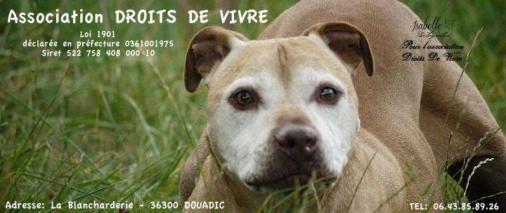 Forum et site DROITS DE VIVRE - Portail 48645811