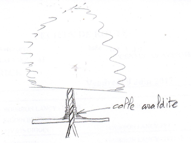 Galerie EPIC - Prince_Philippe - Page 3 Arbre010