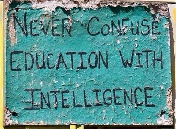 L'intelligence et la bêtise - Page 2 Intell10