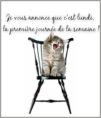 Bonjour - Page 38 Bon_lu10