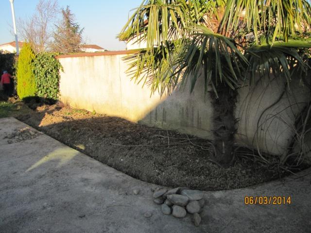 Envie d'un petit coin de jardin exotique Img_6013