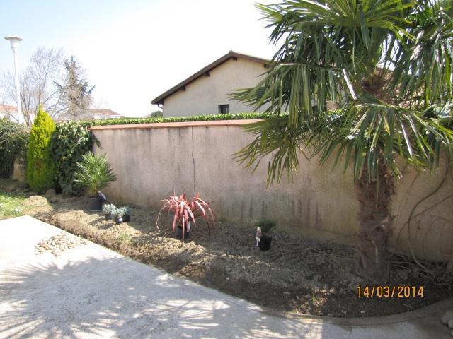 Envie d'un petit coin de jardin exotique Img_6019