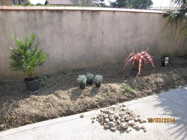 Envie d'un petit coin de jardin exotique Img_6020