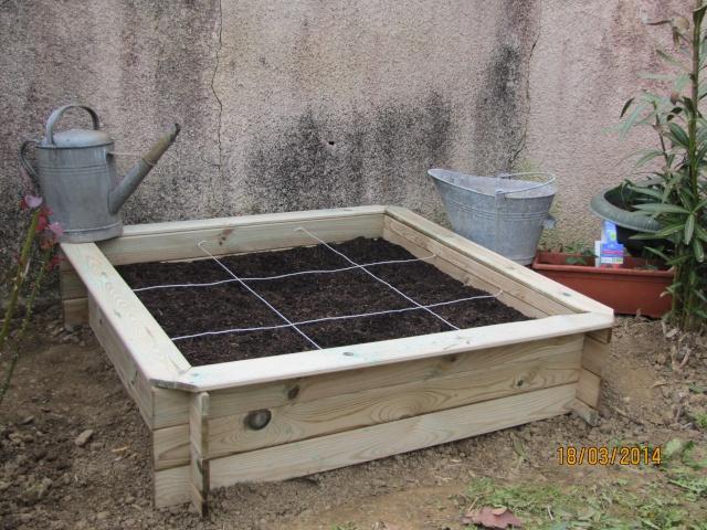 Mon carré potager: vivement la récolte! Img_6021