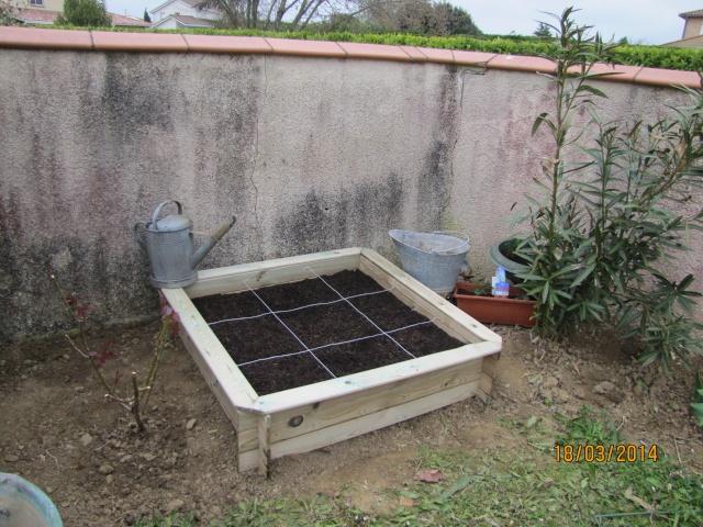 Mon carré potager: vivement la récolte! Img_6022