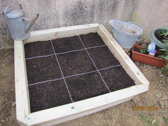 Mon carré potager: vivement la récolte! Img_6023