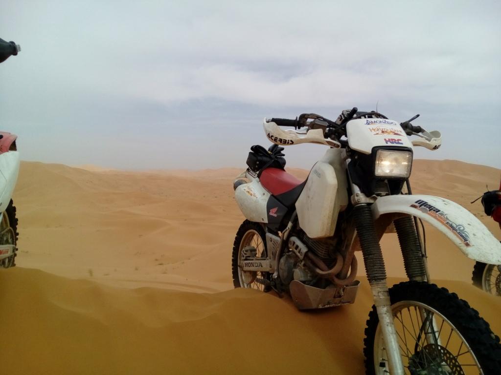 Quelle moto pour balade Marocaine ? Img_2010