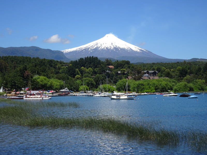 Chili Argentine  Dsc04610