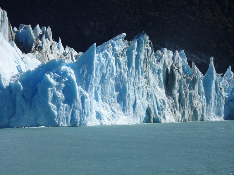 Chili Argentine  Dsc05711