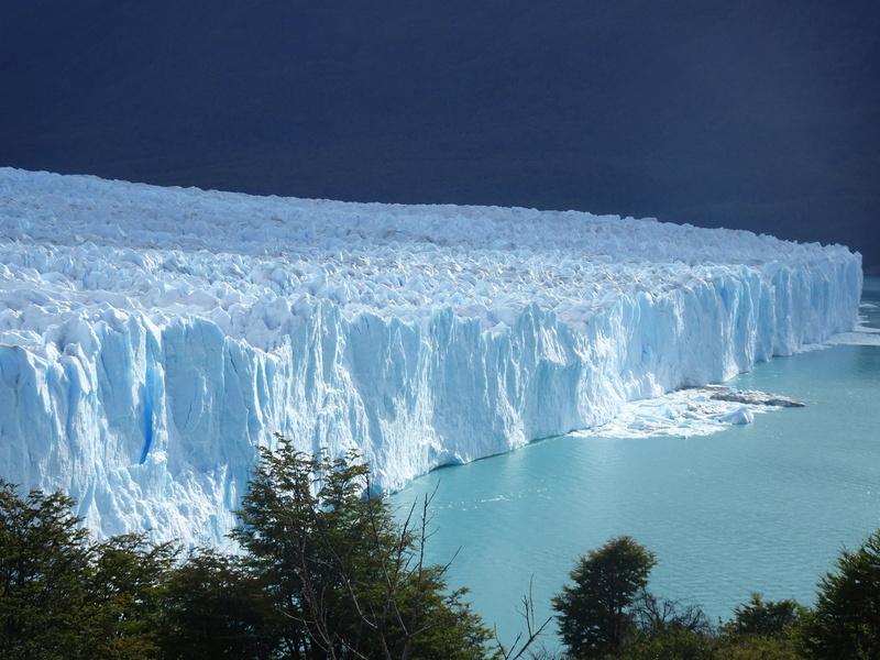Chili Argentine  Dsc05712