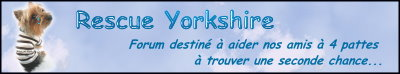 Rescue Yorkshire Ban110