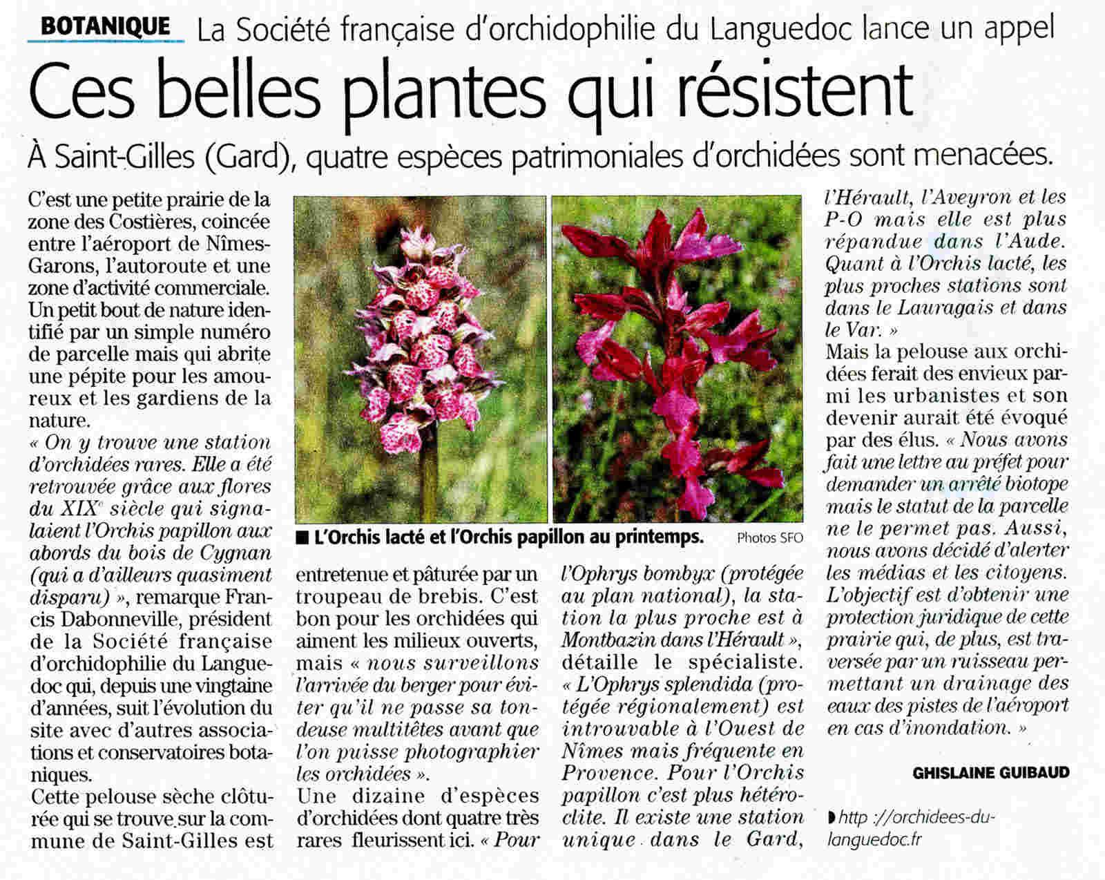 Les fameuses orchidées de Garons bien surveillées... Garons10