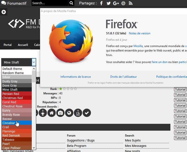 [Bug] The theme selector with Firefox  118
