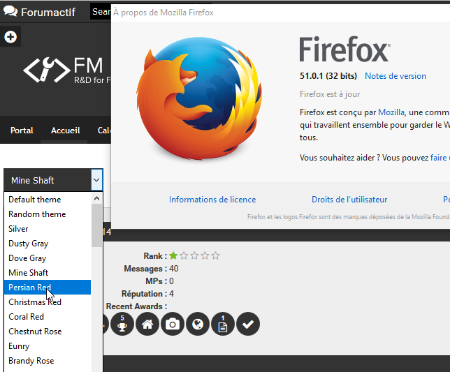 [Bug] The theme selector with Firefox  119