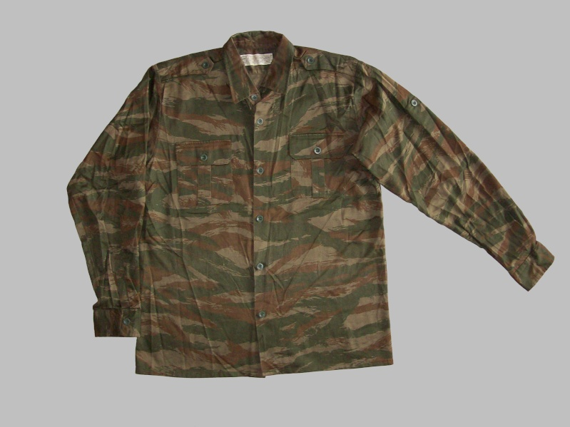 Serbian of Bosnian and Srpska repubic camouflage 100_3223