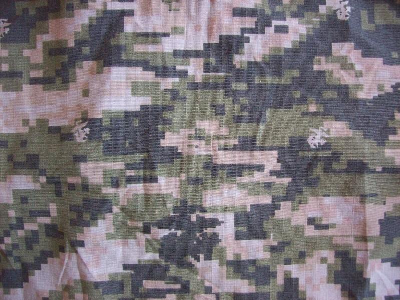ROK Marines Pattern 100_4322