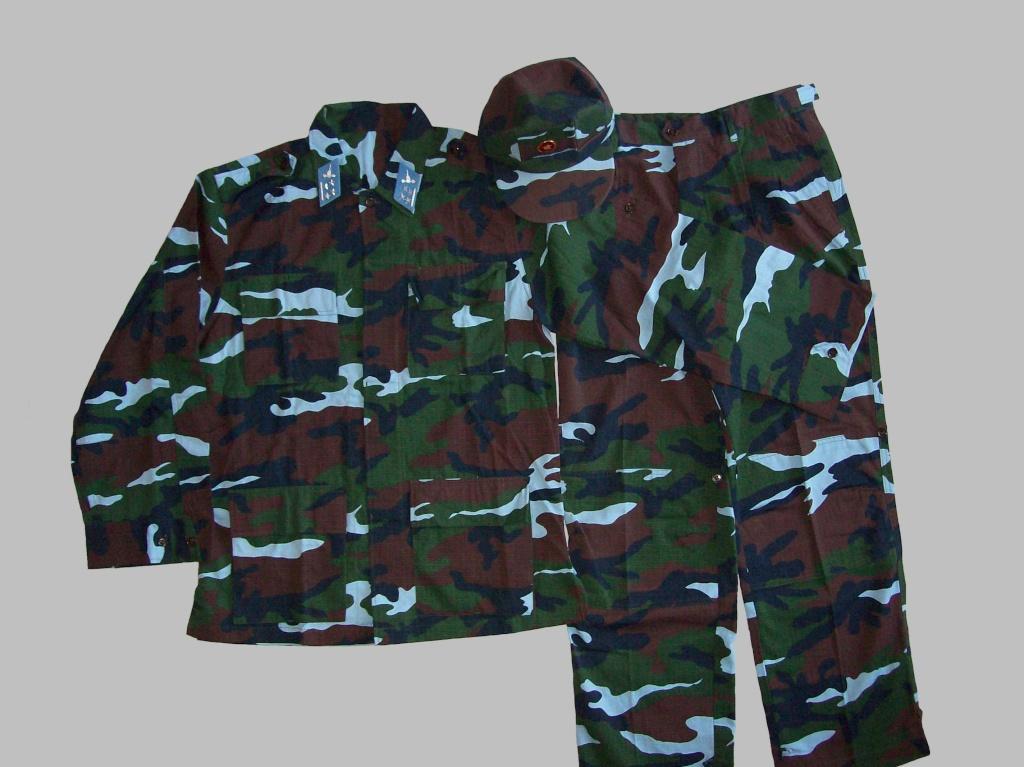 Vietnam camouflage 100_4410