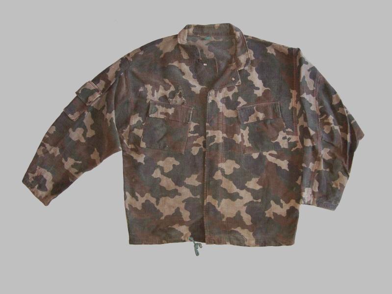 Bosnian camouflage 100_4419