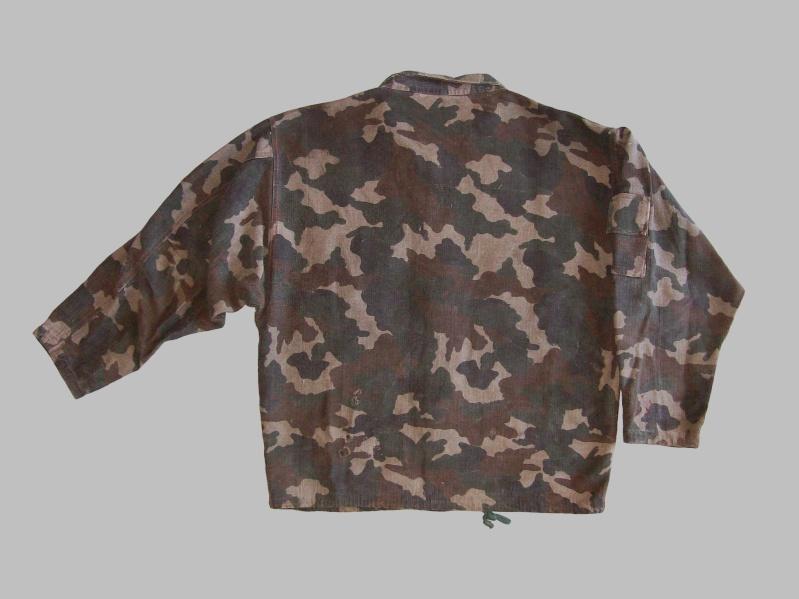 Bosnian camouflage 100_4420