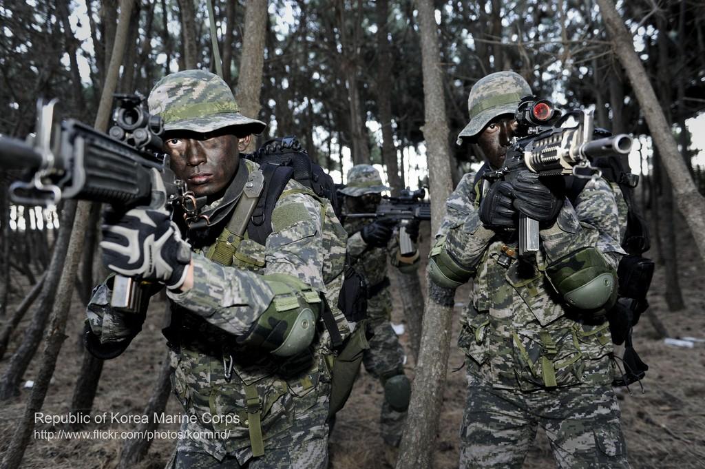 ROK Marines Pattern Corae-16