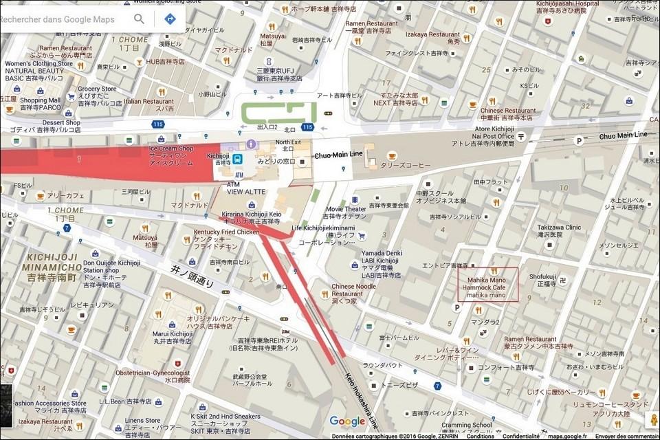 13- TOKYO - CAFES / BARS et LIEUX ATYPIQUES Mahika10