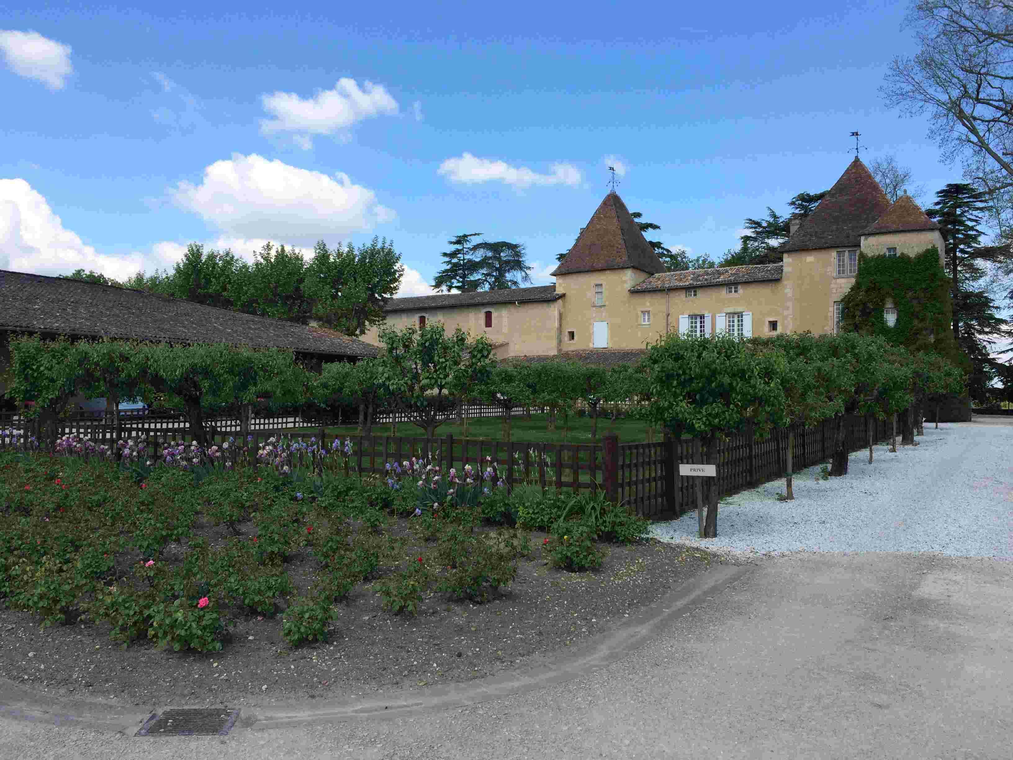 Le vignoble du Pessac Leognan - Page 15 Carbon50