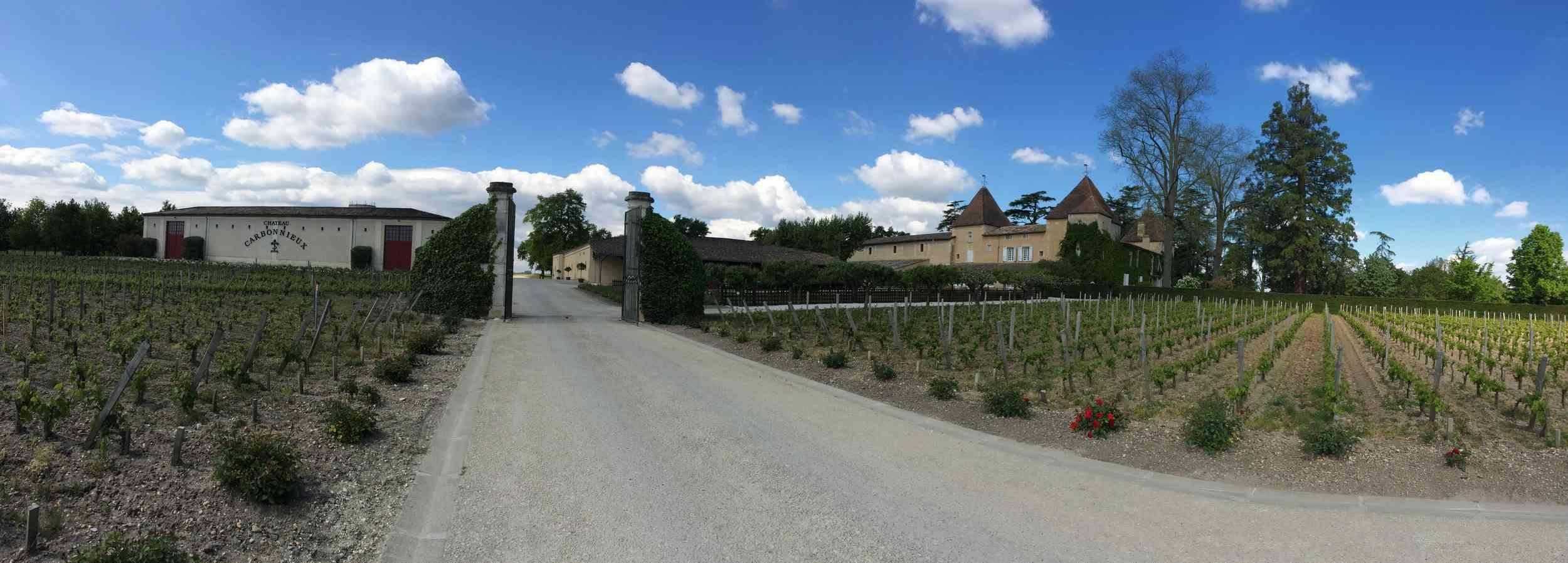 Le vignoble du Pessac Leognan - Page 15 Carbon51