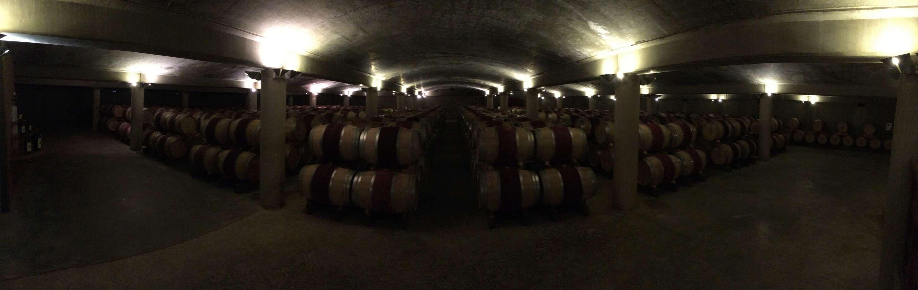 Le vignoble du Pessac Leognan - Page 15 Carbon59
