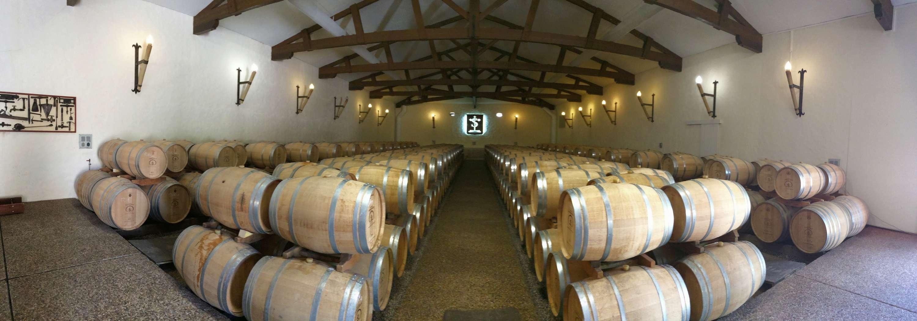 Le vignoble du Pessac Leognan - Page 15 Carbon60