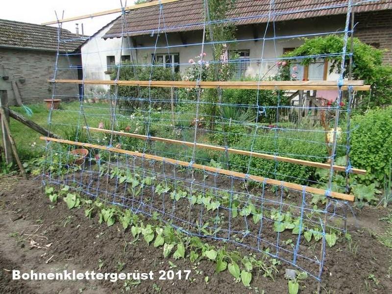 Jardin 2017 Dsc02513