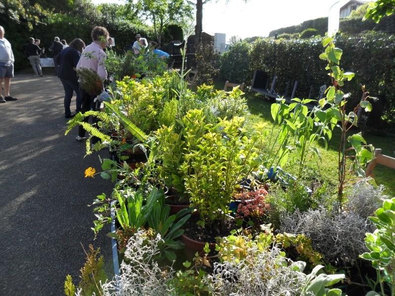 bourse aux plantes Jardin10