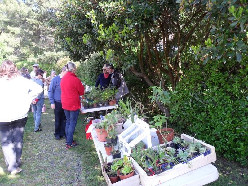 bourse aux plantes Jardin11