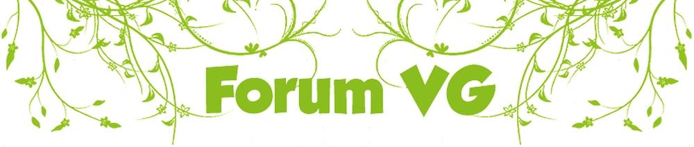 Forum VG