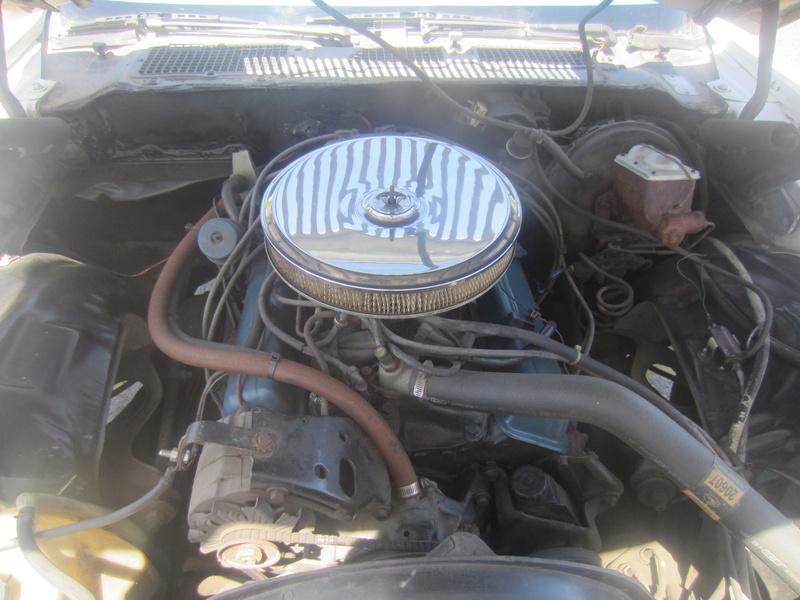 Chevrolet Camaro Z28 1979, 350 4 vit. seulement 75000 km!  Img_0611