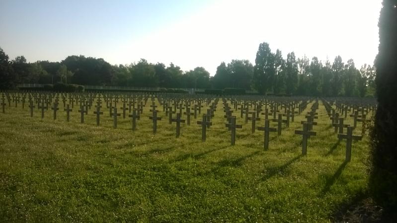Quelques sépultures parmi des centaines (Dept45) Wp_20133