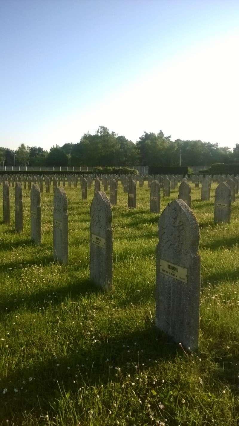Quelques sépultures parmi des centaines (Dept45) Wp_20137