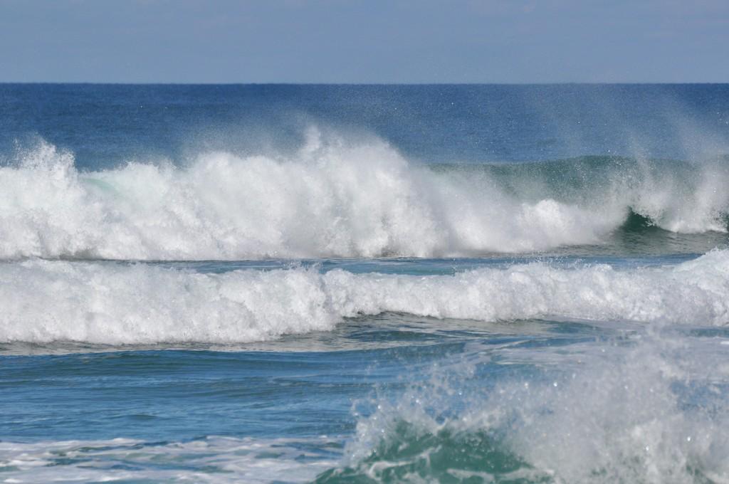 des otaries ??? non des surfeurs ! + ajouts ! Dsc_0188