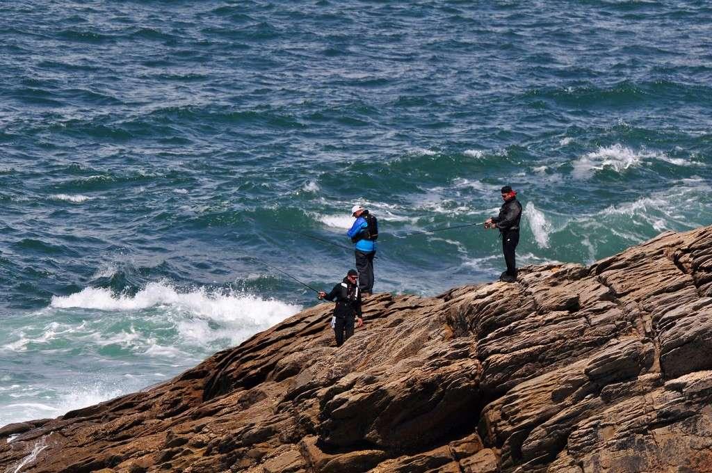 Pêche sur la Côte Sauvage danger !!! Dsc_0391