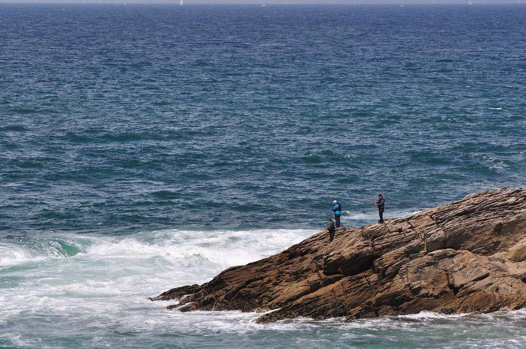 Pêche sur la Côte Sauvage danger !!! Dsc_0392