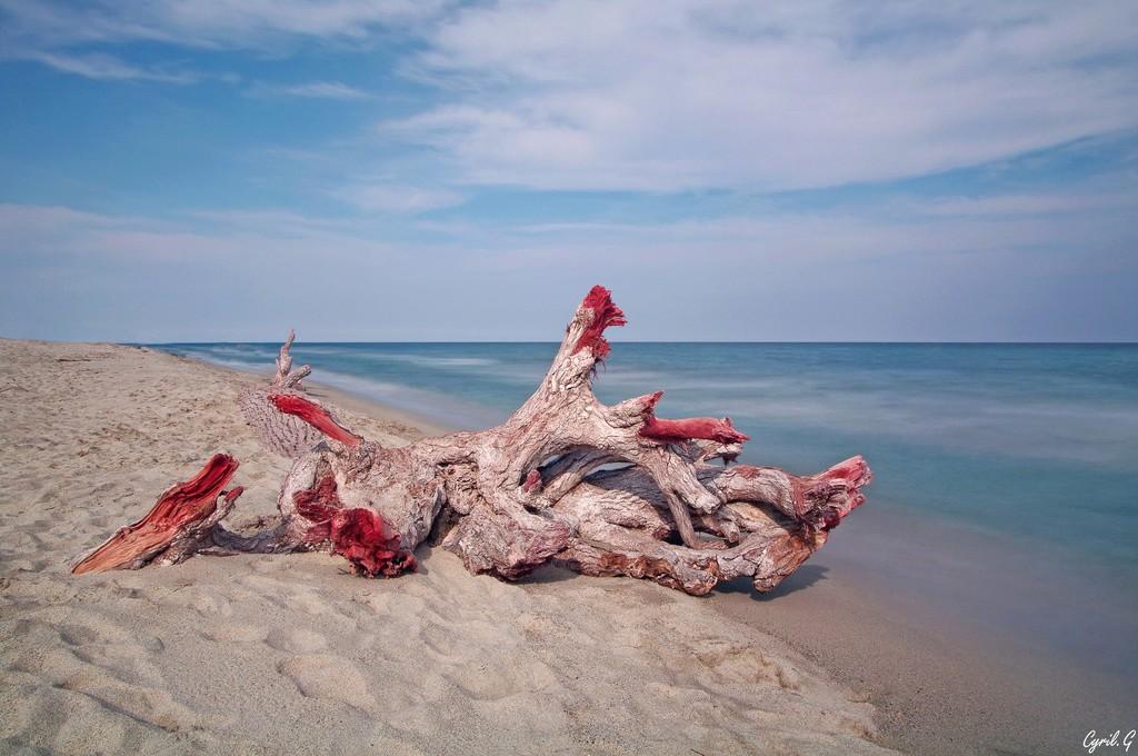 Sur la plage, abandonné. Imgp9510