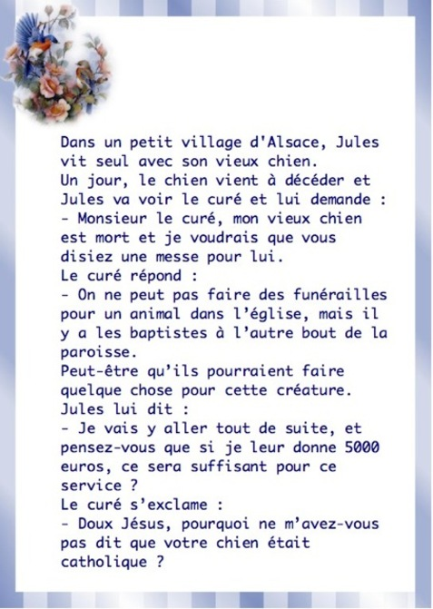 humour - Page 37 -i-hgx10