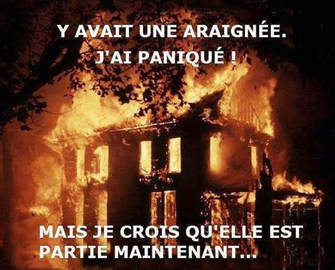 humour - Page 22 16708510