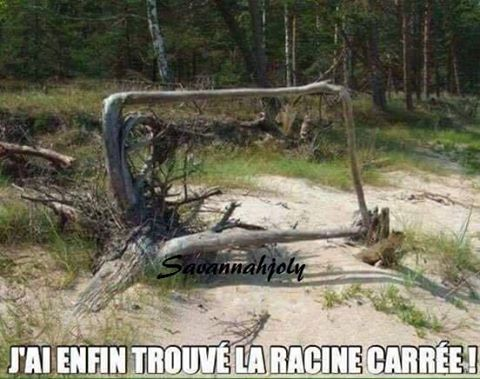 humour - Page 38 17308710