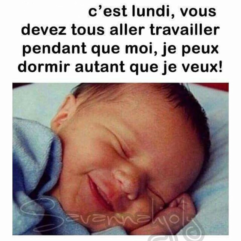 humour - Page 4 17522810