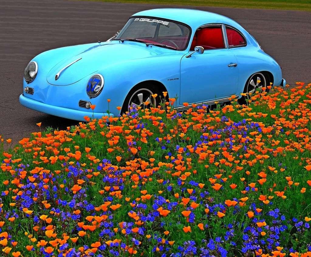 Une Belle photo de Porsche - Page 2 18518210