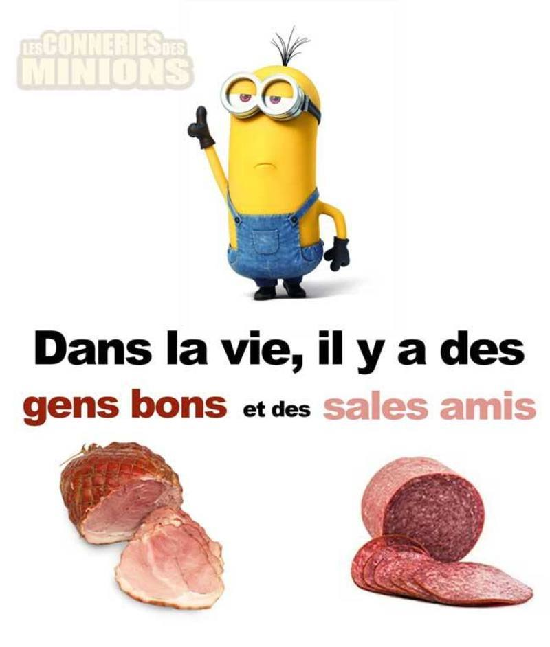 humour - Page 21 41bdd610